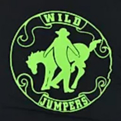 Wild Jumpers - Linedance Gruppe Logo